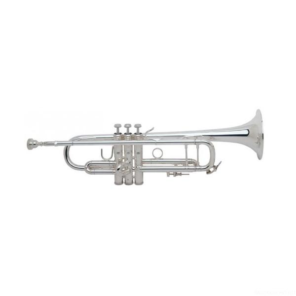 """Труба """"Bb"""" Bach 180S43G"""