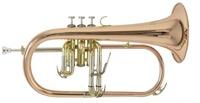 Флюгельгорн Bach FH-501