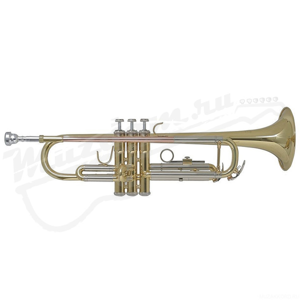 "Труба ""Bb"" Bach TR-655"