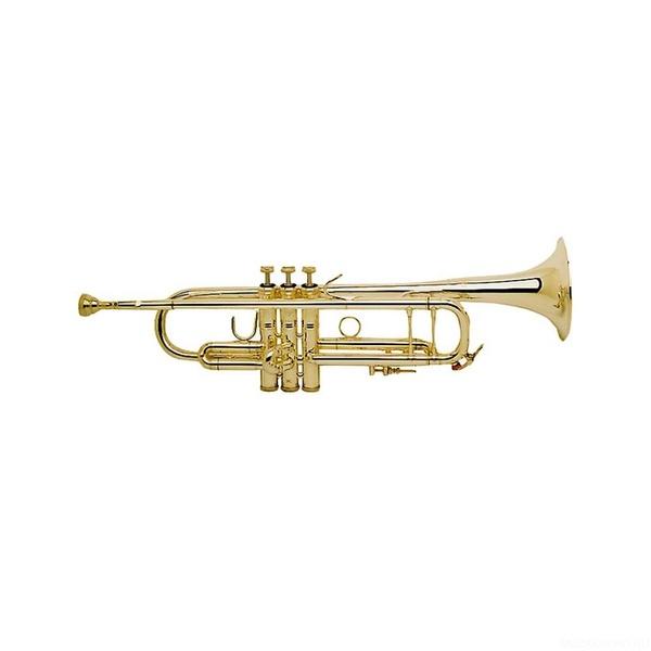"Труба ""Bb"" Bach 180 43"