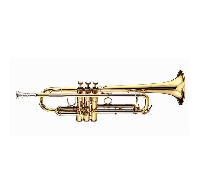 """Труба """"Bb"""" Bach VBS1"""