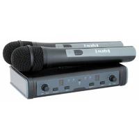 Беспроводная система ProAudio DWS-807HT